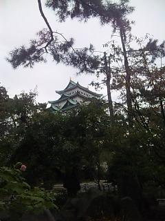 名古屋城に行ってきました