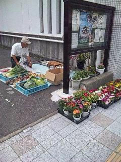 6月のあさがゆ会